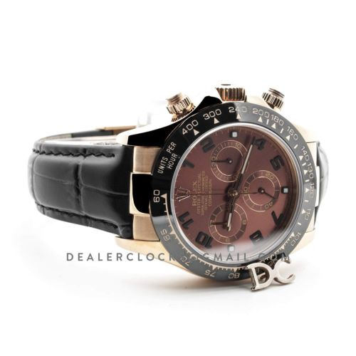 Daytona 116515LN Chocolate Black Dial in Rose Gold