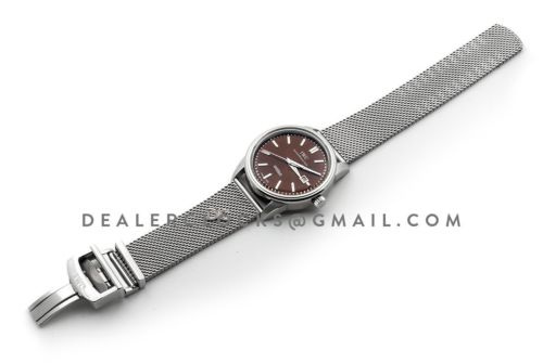 Ingenieur Automatic Limited Edition Vintage 2012 IW323311