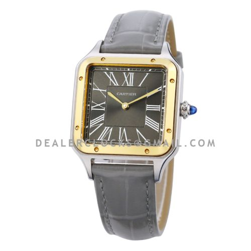 """Santos-Dumont """"Le 14 Bis"""" Limited Edition 49mm Grey Dial in Steel/Yellow Gold"""